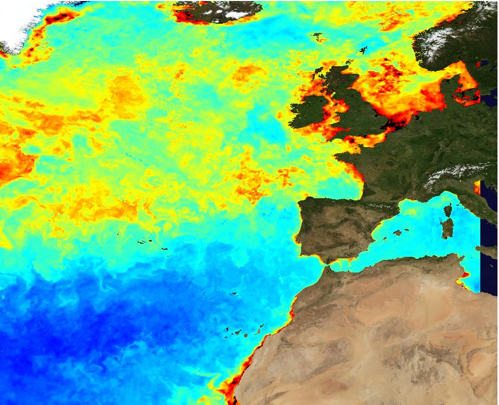 oceancolour-atl-chl-l4-nrt-observations-009-037